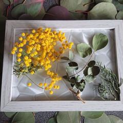 ドライフラワー/新生活/ダイソー/100均/雑貨/ハンドメイド/... スワッグに出来ない花材料でフォトフレーム…