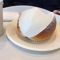 わたしのごはん/ロイズ/イートイン専用/パンナフレスカ/生クリームのパン/ごはん 今日のお昼ご飯は、ロイズのパンナフレスカ…
