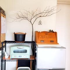 キッチン見せて/イッタラ/アラジン/トースター/鍋/魅せる収納/... キッチン見せて! お気に入りのアラジント…