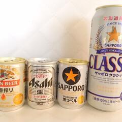 おうちごはん/ミニサイズ/ビール/ゴミ削減 おうちごはんのお供に。 ちょっとビールが…