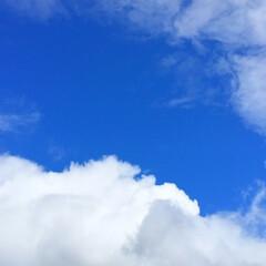 空/雲/青空/天気/景色/風景 雲の切れ目から覗く青空。 爽やかなブルー…(1枚目)