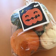 ハロウィン2018/ミニかぼちゃ/かぼちゃの詰め合わせ/ハロウィン仕様 ハロウィン2018 この時期は、かぼちゃ…