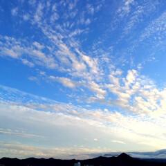 今日の空/雲/シャープ/天気/風景 今日の空。 雲の形がシャープです。 ちょ…