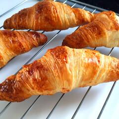 おうちごはん/朝ごはん/クロワッサン/冷凍/フランス/本場の味 おうちごはん。 今日の朝ごはんはクロワッ…