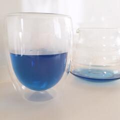 ハーブティ/バタフライピー/青いお茶/生活の木/夏色 ハーブティ。 バタフライピーという青いお…