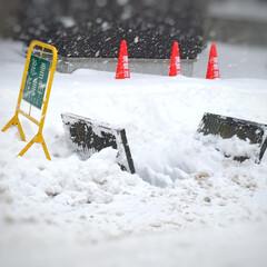 冬の1枚/冬の光景/除雪/雪かき/冬 冬の1枚。 除雪中をパチリ! 歩道や道路…
