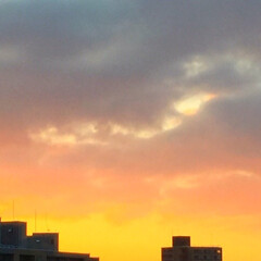 冬の1枚。/朝焼け/寒い朝/冬 冬の朝。朝焼け。 東の空が真っ赤に染まっ…