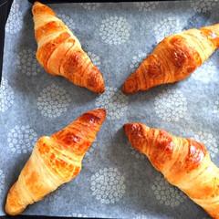 おうちごはん/朝ごはん/ピカール/冷凍クロワッサン/焼きたての香り 今日の朝ごはん。 ピカールの冷凍クロワッ…
