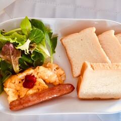 今日のランチ/おうちごはん/ワンプレート/食パン/一人サイズ/ヴィドフランス/... 今日のランチ。 ワンプレートに盛りつけて…