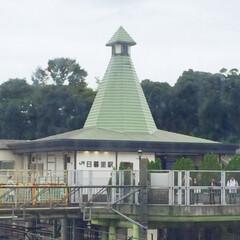 旅の景色/日暮里駅/帽子のような駅舎/旅 旅の景色。 下町散策に誘われて日暮里駅に…