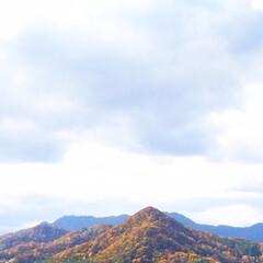 今日の景色/山/紅葉/紅葉狩り/秋/日差し/... 今日の景色。 家の中から見える山が 見事…