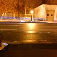 冬の風物詩/北海道/札幌/夜の道/ツルツル道路 冬の北海道・札幌の風物詩。 街灯が凍った…