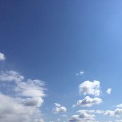 春の一枚/春の空/清々しい/この後雪 春の一枚。 空の青さが清々しい! この後…
