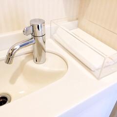 トイレのインテリア/タオルをやめる/ペーパータオル/インフルエンザ対策/モノトーン トイレのインテリアをシンプルに。 吊り下…