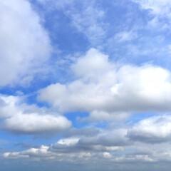 今日の空模様/天気/空/雲/景色/風景 今日の空模様。 雲が多く、風もひんやり。…