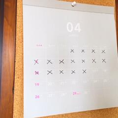 カレンダー/4月/#うちで過ごそう/おこもり生活 カレンダー。 今日は4月17日。 早いも…