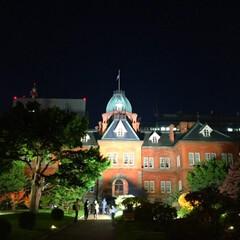 北海道庁/夜/ライトアップ/観光客 ライトアップされれた北海道庁。 昼間は観…