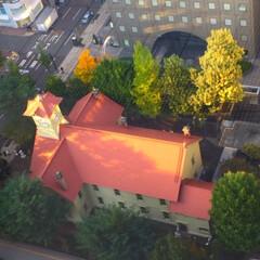 札幌時計台/赤い屋根/紅葉/彩 札幌時計台。 見下ろして上から撮影。 緑…