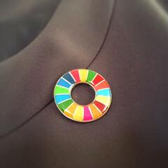 気になること/SDGs/持続可能な開発目標/片づけ/17色/ピンバッジ 最近気になっているのは SDGs。 片づ…