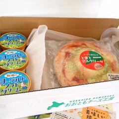 北海道/美味しいモノ/浜中町/ピザ/チーズ/カチョカバロ 北海道の美味しいモノ。 浜中町のおおとも…