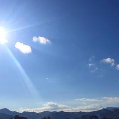 風景/日差し/冬の空/晴れ/日向ぼっこ 冬の空。 日差しが眩しくて、日向ぼっこに…