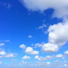 今日の空/天気/太陽/秋の気配 今日の空。 最近は、太陽の高度が低くなっ…