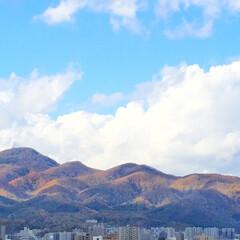 景色/風景/秋の一枚/山の色/山が色づく/秋 秋の一枚。 山が色づいています。 夏は緑…