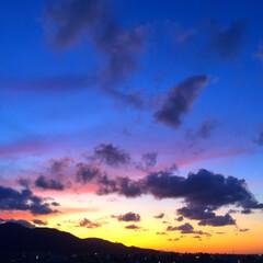 今日の夕日。/空/天気/夕日/オレンジ/紫 今日の夕日。 オレンジ一色だった夕焼けに…