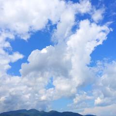今日の空/夏空/雲/青空/天気 今日の空。 朝から青空で気温も高く。 8…