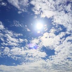 今日の空/天気/太陽/雲/日差し/温かい 今日の空。 雲の間から覗く太陽。 高度が…