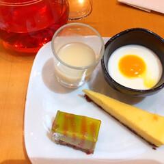 今日のデザート/ビュッフェランチ/ブラマンジェ/絶品 今日のデザート。 ビュッフェランチのもう…