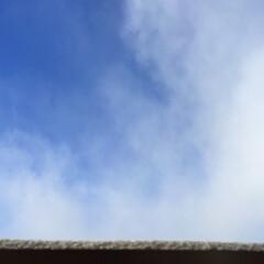 今日の空/青空/雪/雪雲/天気 今日の空。 雪雲が去って、青空が見えまし…