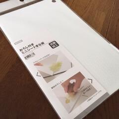 お気に入り/ニトリ/おろし付きミニシートまな板 お気に入りのまな板。 ニトリの おろし付…