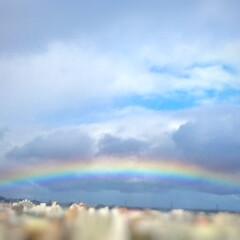 虹/雨/雨の後の虹/希望 朝から雨! 憂鬱だなーと思っていたら、晴…