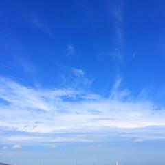今日の空/空/雲/景色/天気 今日の空。 青い空に白い雲。 雲が光線の…
