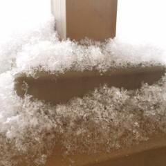 冬の風景/雪の朝/綿毛のような雪 冬の風景。 雪の朝。 ベランダの柵に削っ…