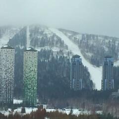 冬の一枚/スキー場/トマム/ツインタワー/定点カメラ/冬 冬の一枚。 定点カメラのように季節ごとに…
