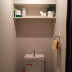トイレ/清潔/潔く/スッキリ トイレをスッキリ使うために、必要なモノを…(1枚目)