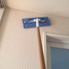 おうち自慢。/掃除/フローリングワイパー/壁の掃除/そうじの神様/フローリング用お掃除クロス/... おうち自慢。 埃が気になるのは床だけでは…