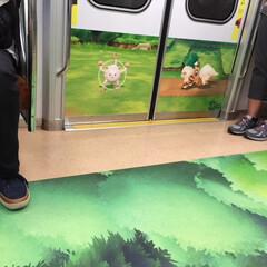 東京/地下鉄/夏の思い出/ポケモン車両 夏休みの思い出。 地下鉄に乗ったら、ポケ…(1枚目)