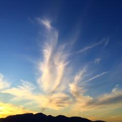 今日の空/雲/造形美/天気/風景/空/... 今日の空。 雲の形が見事です。 自然の造…