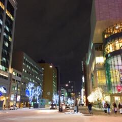 冬の景色/街の中/街路樹/イルミネーション/幻想的/雪 冬の景色。 いつも見慣れている街の様子が…