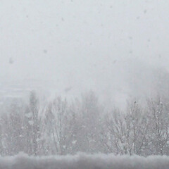 冬の風景/雪/朝の景色 冬の風景。 深々と舞い落ちるように降る雪…