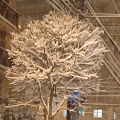 冬の1枚/街路樹/雪の花/猛吹雪/冬 冬の1枚。 猛吹雪になってきました。街路…