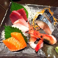 今日のご飯/海鮮/刺身/美味しい/定番 今日のご飯。 北海道と言えば、海鮮! 定…