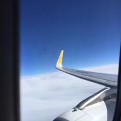 飛行機/翼/窓側の席/三日月 乗り物に乗るときは、ほぼ窓側に座ります。…