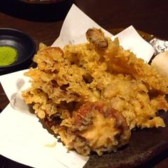 今日のご飯/キノコの天ぷら/抹茶塩/季節メニュー 今日のご飯。 キノコの天ぷら。 季節のオ…