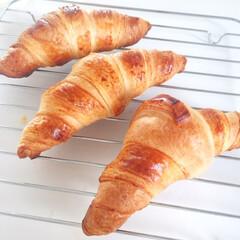 朝食/冷凍/クロワッサン/オーブン/キレイな焼け色 今日の朝ごはん。 冷凍クロワッサンを焼い…