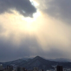 冬の一枚/皆既日食/冬の空/神秘的/冬 今日は皆既日食でしたね。 見ることはでき…
