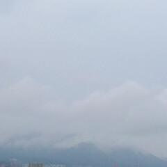 天気/雨/立秋/蒸します 台風の影響か、今日は雨。 照りつける太陽…